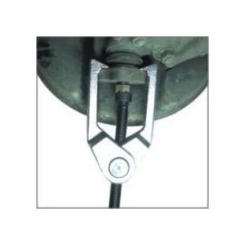 Extractor de Rótulas y Terminales